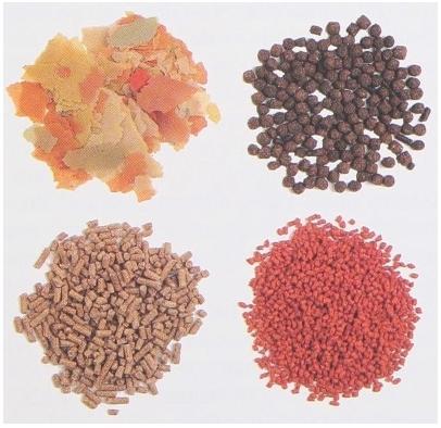 korma-dlya-ryb-s-vitaminami