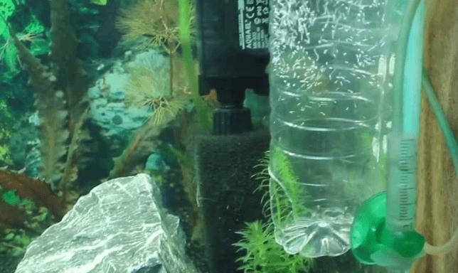 распылитель для аквариума самостоятельно