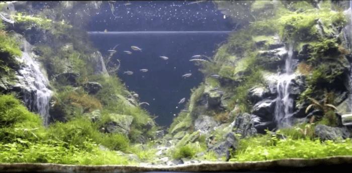 подводный водопад в аквариуме