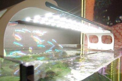 Светодиодные ленты для аквариумов