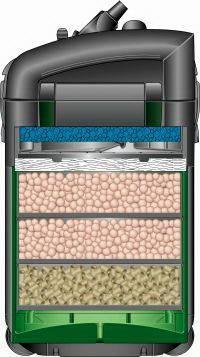 Биологическая фильтрация