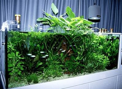 освещение для аквариумов своими руками